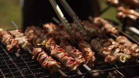 Fry the pork on the grill. Beautiful summer weather. Video with sound. stock footage