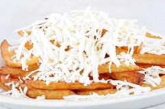 Fry Potato With Cheese Royalty Free Stock Images