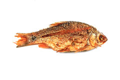Fryed fish Royalty Free Stock Photo
