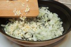 Fryer, καυτό πετρέλαιο, κρεμμύδι, σκόρδο Στοκ εικόνα με δικαίωμα ελεύθερης χρήσης