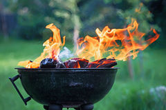 Fryer with burning firewood. Fryer with burning fire wood against a green background Royalty Free Stock Images