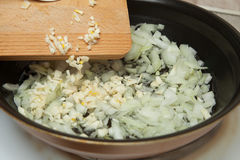 Fryer, hot oil, onion, garlic royalty free stock image