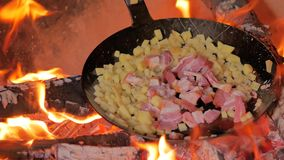 Frying bacon and potatoes over campfire stock video