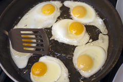 Frying a batch of eggs Stock Photography
