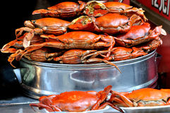 Frying and boiled crabs in red Royalty Free Stock Photography