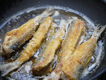 Frying cut fish Royalty Free Stock Image