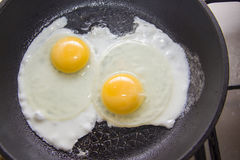 Frying eggs in a pan Royalty Free Stock Image