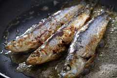 Frying fish Stock Photography