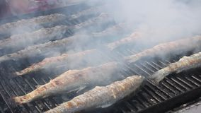 Frying fish on the grill stock video footage