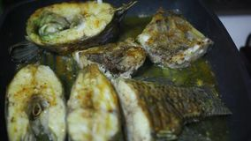 Frying fish in a grill pan with tomatoes, cheese stock video footage