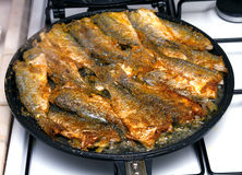 Frying fish Royalty Free Stock Image