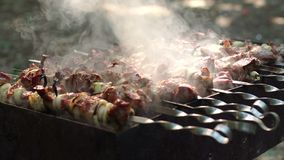Frying grilled pieces of meat during the rest. The smoke rises over the fried meat on the skewers on the coals. Meat on the grill. Barbecue party with delicious stock footage