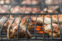 Frying meat on the coals Royalty Free Stock Photos