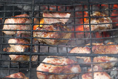 Frying meat on the coals Royalty Free Stock Photo