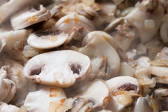 Frying mushrooms Stock Image