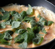 Frying omelete. Omelete with herbs on frying pan royalty free stock photos