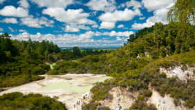Frying Pan Flat. Pool at Wai-O-Tapu  geothermal area in  New Zealand Royalty Free Stock Image