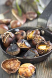 Frying pan with roasted chestnuts. Royalty Free Stock Photo