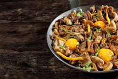 Frying pan steel with mushrooms and soft egg yolks. Stock Photography