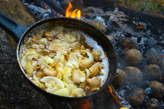 Frying potatoes with onion on bonfire royalty free stock images