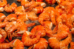 Frying prawn Stock Images