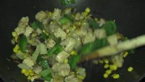 Frying the Quorn Tikka Masala ingredients. stock footage