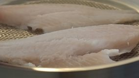 Frying red fish stock footage