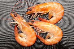 Frying shrimps Royalty Free Stock Images