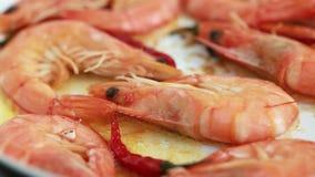 Frying shrimps on frying pan stock video