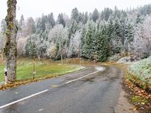 Frysa vinterlandskap med frostade träd Royaltyfri Foto