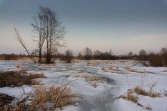 Fryst över flodpöl Royaltyfri Fotografi