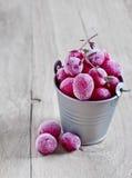 fryst cranberry arkivfoto