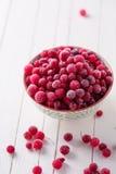 fryst cranberry fotografering för bildbyråer