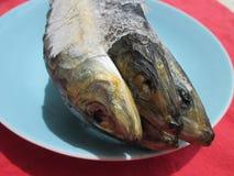 fryst fisk Royaltyfri Foto