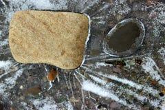 Fryst frost på en pöl som stenar ligger i royaltyfri bild