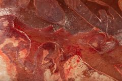 Fryst ny nötköttlever i kvarter, textur av djupfryst lever arkivfoto