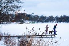 Fryst sjö i vinter, med pir, folk och hunden arkivfoton