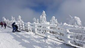 Fryst snö på skidar i Charpatians Montains royaltyfri foto