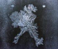 Fryst vatten på fönstret skapar silvergarneringprydnader som drake royaltyfri foto