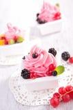 Fryst yoghurt för is kräm Arkivfoto