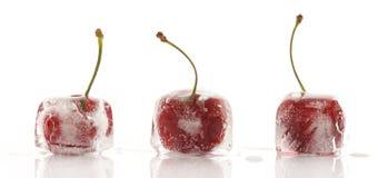 fryste Cherry fotografering för bildbyråer