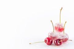 fryste Cherry Royaltyfria Bilder