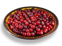 fryste cranberries Royaltyfri Foto