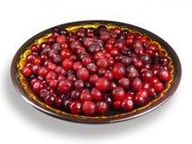 fryste cranberries Royaltyfri Foto