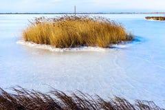 fryste lagun Kalochori i Grekland Fotografering för Bildbyråer