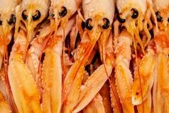 Fryste räkor grillat hav för fiskmatparsley platta tät for för ätamatflicka upp fotografering för bildbyråer
