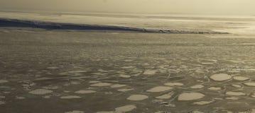 fryste vattnet i den Siberian floden royaltyfria bilder