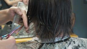 Fryzjer ciie długie włosy na nape klient w salonie Mężczyzna obsiadanie w fryzjera karle Podczas gdy Shearing Z zbiory wideo