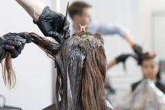 Fryzjer kolorystyki włosy żeński klient Obrazy Royalty Free