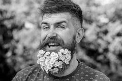 Fryzjer męski i fryzury pojęcie Mężczyzna z brodą i wąsy na rozochoconej uśmiechniętej twarzy, zielony tło, defocused modniś zdjęcia stock